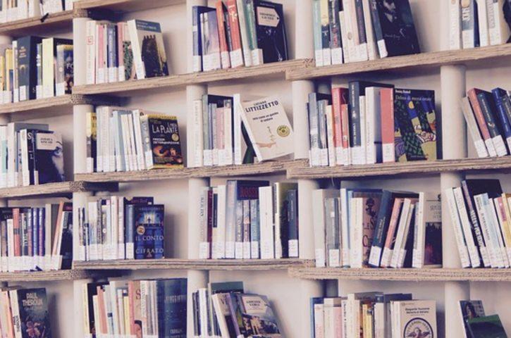 Niewidzialna półka na książki – europejski hit roku 2018